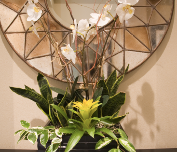 design home with mirrors, decorate home with mirrors, different uses for mirrors, many ways mirror