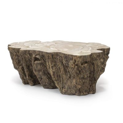Petrified Wood Lava Coffee Table