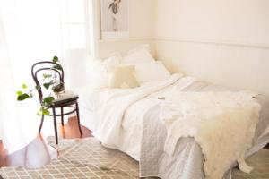 Where is your rug going to be placed? - Talie Jane Interiors