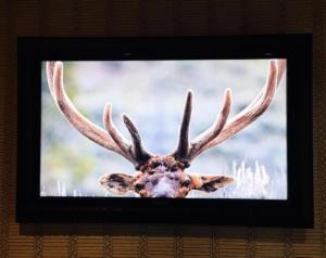 Framed Flat Screen TV - Talie Jane Interiors