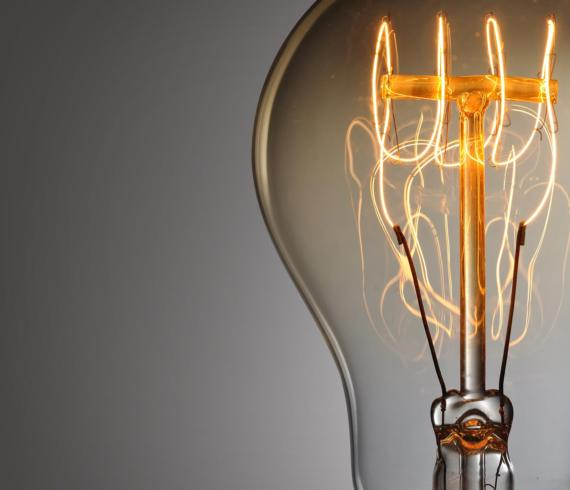The Edison Light Bulb - Talie Jane Interiors